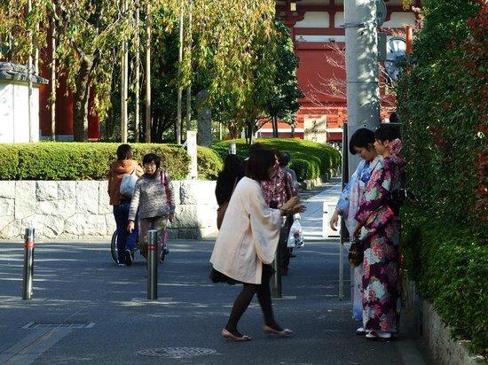 Asakusa Shrine : 1