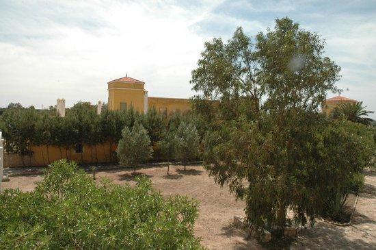 Villa Juba: Les jardins autour de la maison