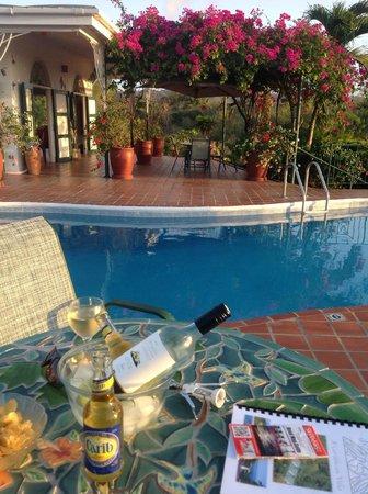 Top O' Tobago Villa & Cabanas: Around the pool