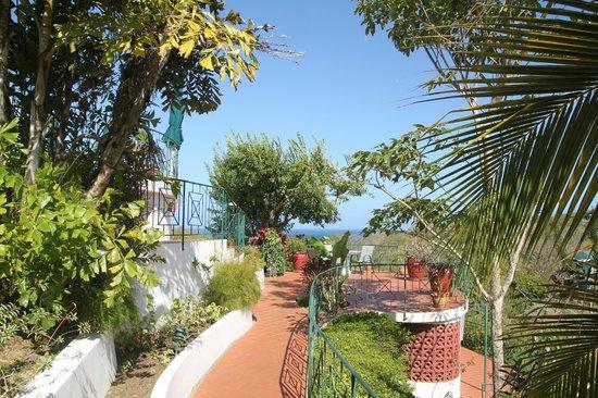 Top O' Tobago Villa & Cabanas: Around the villa