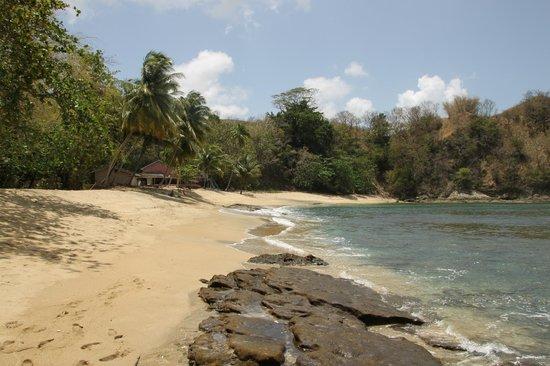 Top O' Tobago Villa & Cabanas : Englishman's Bay