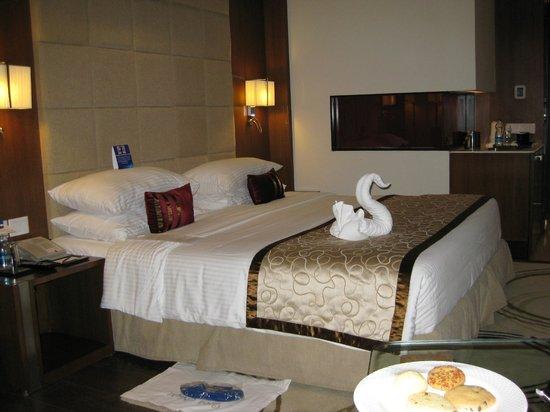 Radisson Blu Agra Taj East Gate: Zimmer
