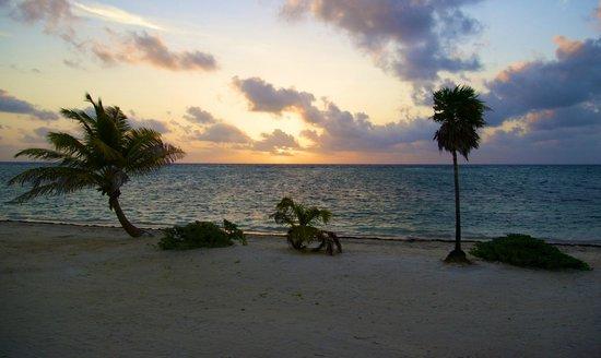 Blackbird Caye Resort: Nice scene to wake up to ...