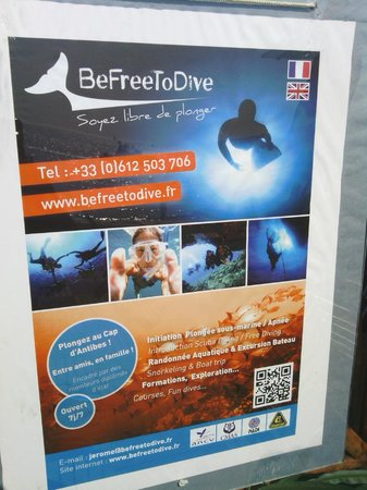 Be Free To Dive