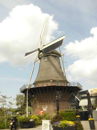 Rembrandt Molen van Sloten - Amsterdam / Kuiperijmuseum : moinho