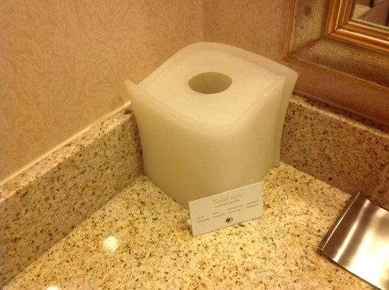 DoubleTree by Hilton Hotel Portland: no tissues