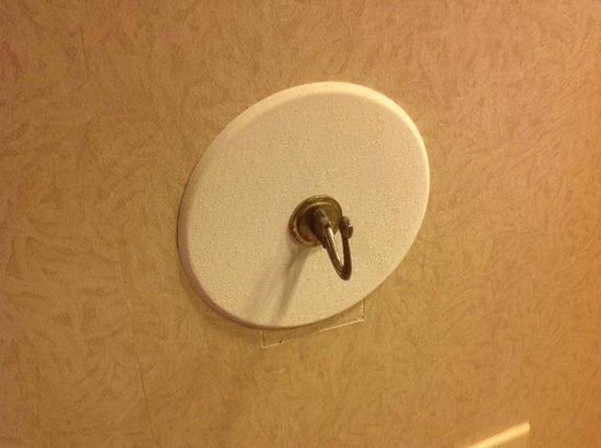 DoubleTree by Hilton Hotel Portland: Is that really the hook they put on, literally a circle over a square
