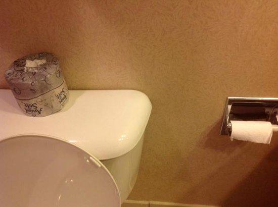 DoubleTree by Hilton Hotel Portland: Toilet paper