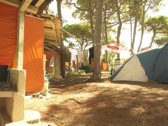 Camping La Mariposa: View from our outdoor kitchen/patio area, looking onto campsite