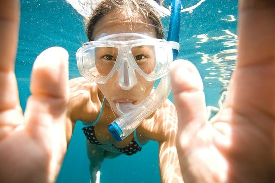 Be Free To Dive : Snorkeling Tour