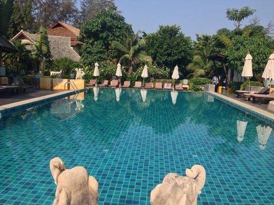 Seashell Resort Koh Tao: pool