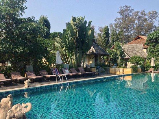 Seashell Resort Koh Tao : pool
