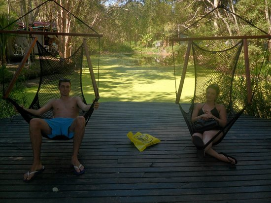 The Arts Factory Backpackers Lodge: swing chairs