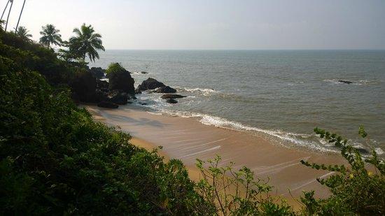 Waves Beach Resort: spiaggia sottostante l'hotel