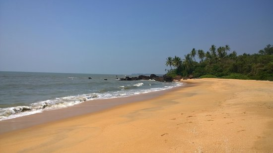 Waves Beach Resort: Thottada Beach