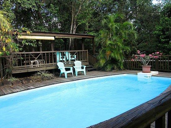 Au Jardin des Colibris: La piscine