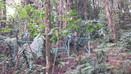 Parc Selvatura : Upper Platform at end of 1km run