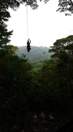 Parque Selvatura: Coming in for a landing