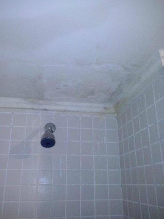 Prodigy Hotel Recife: Banheiro com infiltrações