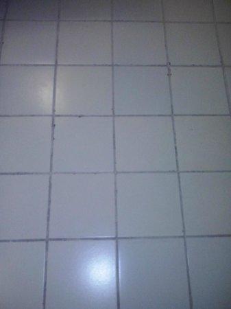 Prodigy Recife by GJP: O piso mostra a idade e a má conservação.
