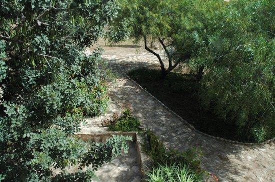 Villa Juba: Les allées du jardin