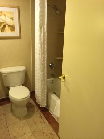 DoubleTree by Hilton Hotel Fort Lee - George Washington Bridge : toilet