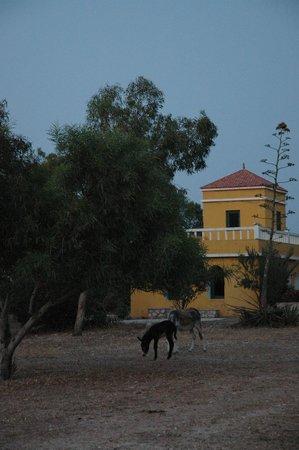 Villa Juba: Le spa et le hammam