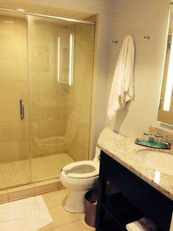 Slightly Rusty Bathroom Picture Of Hotel Indigo Baton Rouge