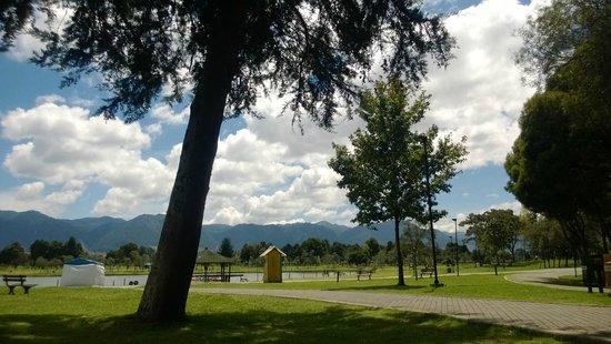 Parque Central Simón Bolivar: Nice views in the park