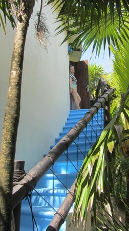 Las Ranitas Eco-boutique Hotel: stairs leading up to the room