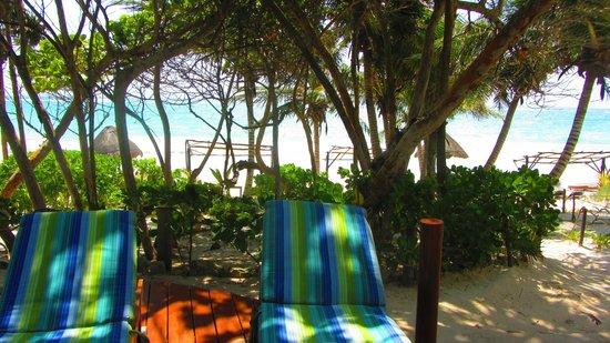 Las Ranitas Eco-boutique Hotel: beach view from pool area