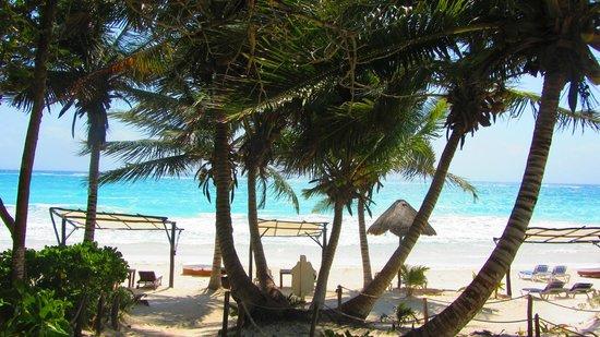 Las Ranitas Eco-boutique Hotel: beach