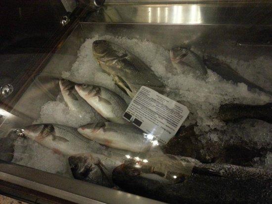 Bacchus Il Pesce E Il Vino : Bancone pesce