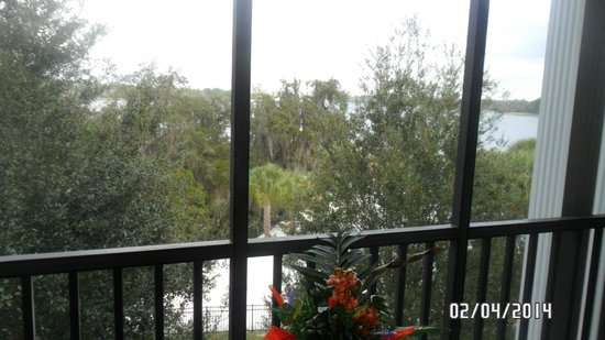 Bahama Bay Resort Orlando by Wyndham Vacation Rentals: looking out our small but private balcony