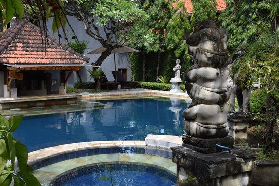 Putu Bali Villa and Spa: очень глубоко