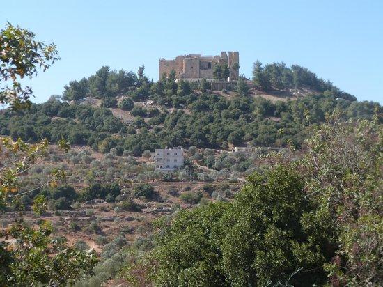 Ajlun Castle (Qala'at ar-Rabad) : Château d'Ajloun