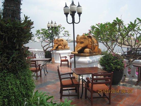 Anantara Riverside Bangkok Resort : Elephants!