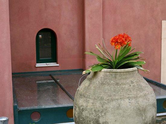 Hotel Villa Schuler: Hotel vaso fiore..