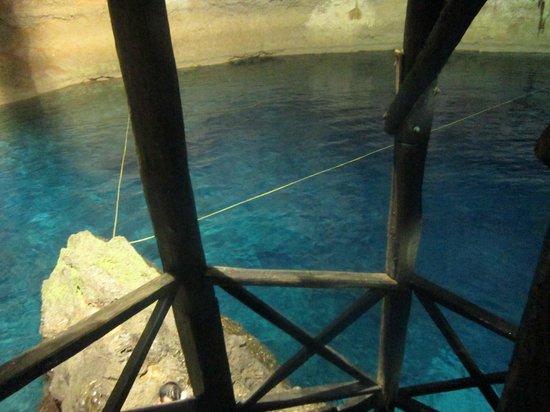 Cenote Chaak Tun : scaletta in sicurezza x scendere e trampolini x tuffarsi