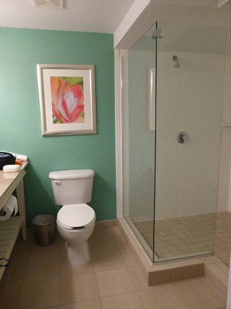 Hotel Indigo Sarasota: Modern bathroom