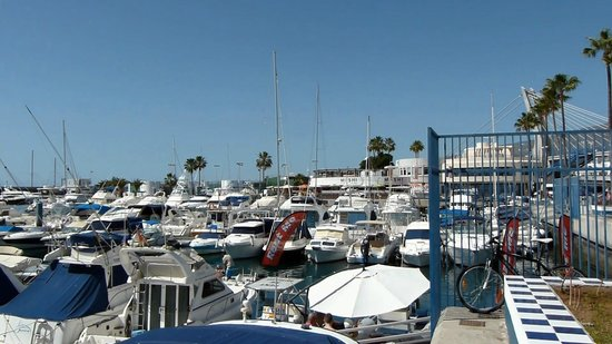 Club Náutico Puerto Colón: View of Marina