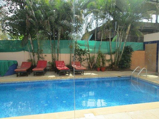 Calangute Grande: Swimming Pool