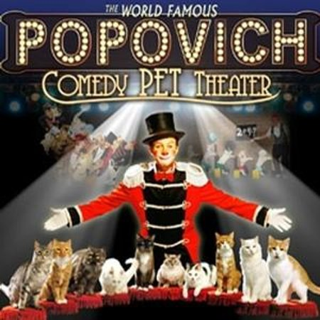 Gregory Popovich's Comedy Pet Theater: Comedy Pet Theater