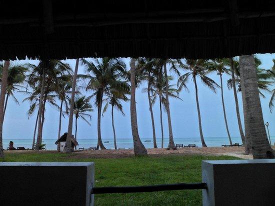 Karafuu Beach Resort and Spa: Vista dalla Junior Suite nr. 11