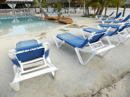 Coconut Cove Resort and Marina: Pool area