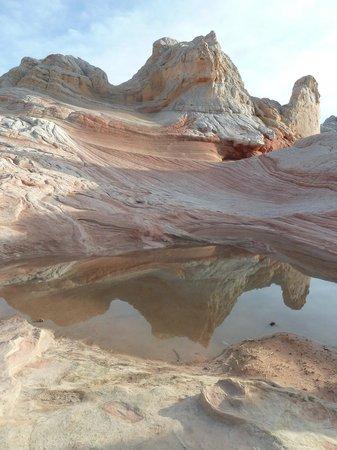 Dreamland Safari Tours: South Coyote Buttes