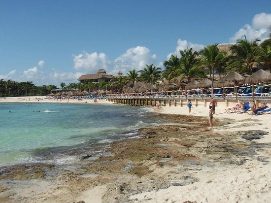 Catalonia Riviera Maya : Main beach area - good snorkeling but wear surf shoes