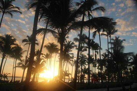 Barcelo Bavaro Beach - Adults Only: Amanecer