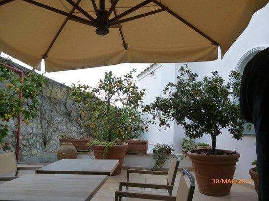 Hotel Canasta: zona relax