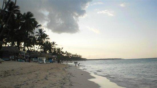 Vista Sol Punta Cana: the beach